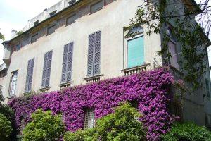 Genova - Villa Spinola fiorita